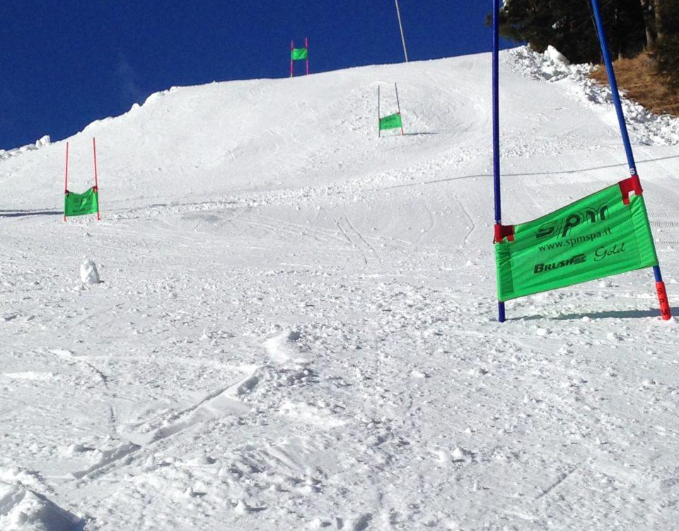 Gigante funny ski